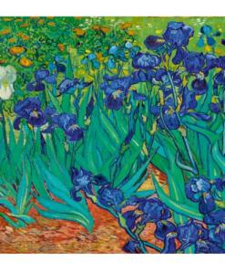 Puzzle Vincent Van Gogh - Irises, 1889 (détail) - Qualijouet